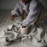 snackcup-van-mushie